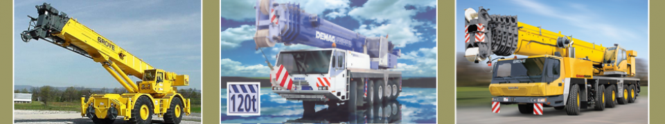 Used Terex Crane for Sale | Used Terex Cranes